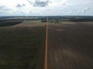 Plantações de soja cercam floresta amazônica em Santarém (PA)