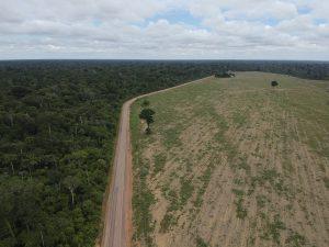 Rodovia BR 163 entre a Floresta Nacional do Tapajós e campos de soja no Pará