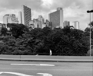 Coronavírus deixou as ruas de São Paulo vazias Vinicius Mendes)