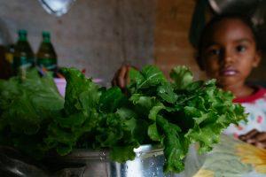 Produção de alimentos no Cerrado pode ajudar nesse momento de crise (Andressa Zumpano/Acervo ActionAid Brasil)
