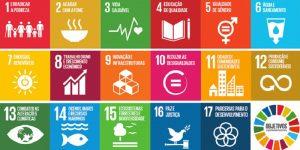 Objetivos de Desenvolvimento Sustentável da ONU (Divulgação)