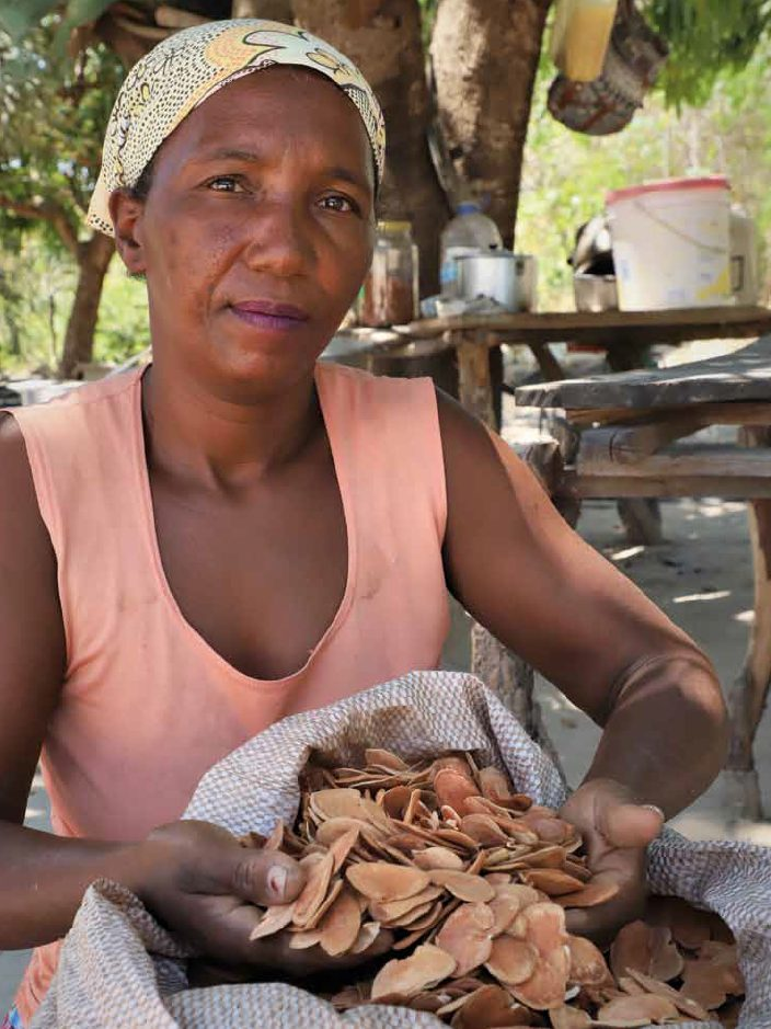 Raizeiras do Cerrado (Jaqueline Evangelista Dias/Articulação Pacari)