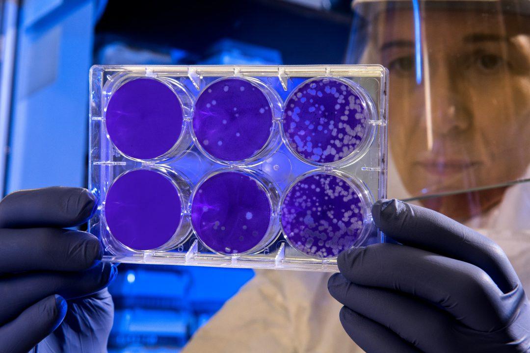 Para o desenvolvimento da vacina contra a Covid-19, os estudos estão sendo acelerados.(CDC/Unsplash)