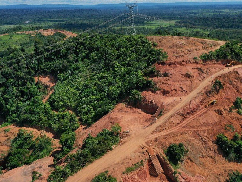 Operação Verde Brasil realizada por militared (Warley de Andrade/TV Brasil)