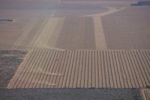 Monocultivos devastando o Cerrado do oeste da Bahia (Thomas Bauer/CPT)