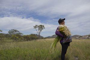 Apanhadora do flores sempre-vivas - (Crédito João Ripper/Acervo Codecex)